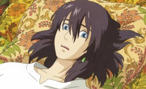 Rating: Safe Score: 6 Tags: howl howl_no_ugoku_shiro male screening studio_ghibli User: kikiyo