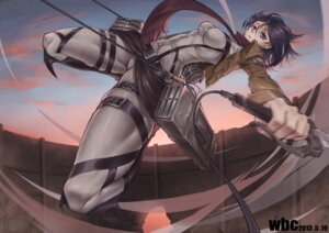 Rating: Safe Score: 40 Tags: bodysuit cheng_pitang mikasa_ackerman shingeki_no_kyojin sword uniform User: vkun