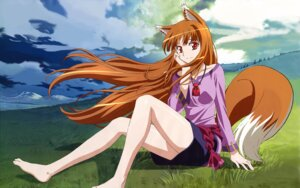 Rating: Safe Score: 39 Tags: animal_ears arakawa_megumi holo spice_and_wolf tail wallpaper User: wadeorz