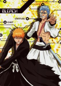 Rating: Safe Score: 5 Tags: bleach grimmjow_jeagerjaques kurosaki_ichigo male User: Radioactive