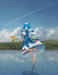 Rating: Safe Score: 26 Tags: autographed cirno dress feet gotoh510 touhou wings User: charunetra