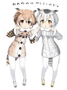 Rating: Safe Score: 26 Tags: eurasian_eagle_owl kemono_friends northern_white-faced_owl pantyhose sekira_ame tail User: nphuongsun93