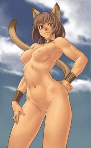 Rating: Explicit Score: 56 Tags: animal_ears final_fantasy final_fantasy_xi gochou_(kedama) mithra naked nekomimi nipples pussy tail uncensored User: Radioactive