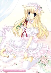 Rating: Safe Score: 40 Tags: animal_ears cleavage dress hasekura_chiaki lolita_fashion nekomimi stockings tail thighhighs User: fireattack