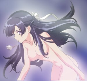 Rating: Explicit Score: 46 Tags: kakumeiki_valvrave naked nipples rukino_saki vector_trace User: YesYesYesYES!