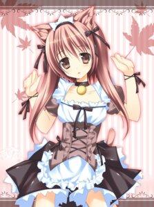Rating: Safe Score: 54 Tags: animal_ears maid nanaroba_hana nekomimi User: blooregardo