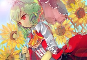 Rating: Safe Score: 13 Tags: acidear kazami_yuuka touhou User: Mr_GT