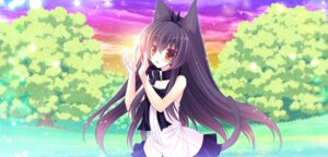 Rating: Safe Score: 42 Tags: animal_ears aurora dress game_cg nekomimi p19 shiro_no_pikapika_ohoshi-sama summer_dress sweet_light tail User: Radioactive