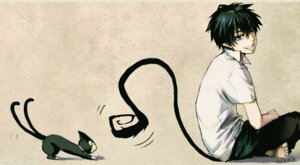Rating: Safe Score: 19 Tags: 321zwei ao_no_exorcist kuro_(ao_no_exorcist) male neko okumura_rin tail User: charunetra