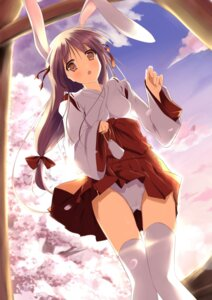 Rating: Questionable Score: 60 Tags: animal_ears bunny_ears jpeg_artifacts miko mycstea pantsu skirt_lift thighhighs User: BunnyGirls