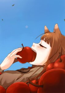 Rating: Safe Score: 16 Tags: animal_ears ayakura_juu holo spice_and_wolf User: Radioactive