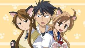 Rating: Safe Score: 5 Tags: akizora_hiroki animal_ears kousaka_junpei mizuno_kaede nekomimi nyan_koi seifuku sumiyoshi_kanako wallpaper User: bakabakashii