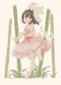 Rating: Safe Score: 8 Tags: animal_ears bunny_ears dress feet inaba_tewi inazakura00 tail touhou User: Mr_GT