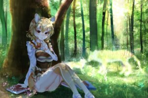 Rating: Safe Score: 26 Tags: animal_ears kemono_friends noah_(noxxxmo) pantsu tail thighhighs thylacine User: Mr_GT