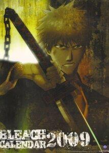 Rating: Safe Score: 6 Tags: bleach kurosaki_ichigo male nagasawa_yukie User: blooregardo