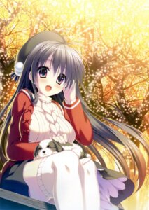 Rating: Safe Score: 64 Tags: sweater thighhighs yuzuna_hiyo User: Twinsenzw