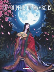 Rating: Safe Score: 16 Tags: erimo jpeg_artifacts kimono princess_kaguya User: Hiruko