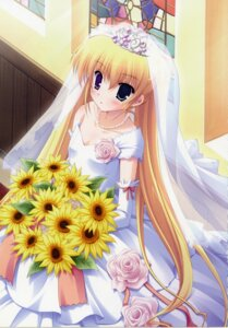 Rating: Safe Score: 33 Tags: dress heterochromia hoshiful hoshikawa_ruka ikegami_akane wedding_dress User: admin2