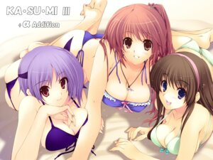 Rating: Safe Score: 85 Tags: ayane_(doa) bikini dead_or_alive hitomi iizuki_tasuku kasumi swimsuits wallpaper User: wheero