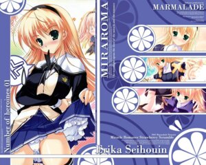 Rating: Safe Score: 12 Tags: marmalade mikeou miraroma pantsu seifuku seihouin_erika skirt_lift wallpaper User: admin2