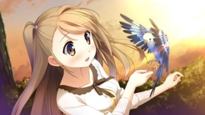 Rating: Safe Score: 51 Tags: cube game_cg ichinose_hotori kantoku your_diary User: donicila
