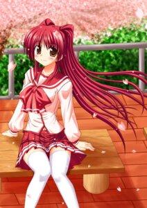 Rating: Safe Score: 10 Tags: kousaka_tamaki seifuku to_heart_2 to_heart_(series) User: Radioactive