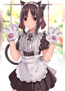 Rating: Safe Score: 33 Tags: animal_ears kaguya-sama_wa_kokurasetai_~tensai-tachi_no_renai_zunousen~ maid shinomiya_kaguya tagme tail User: BattlequeenYume