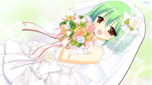 Rating: Safe Score: 28 Tags: dress miyasu_risa nanakase_shikiko nekonade_distortion nekonade_distortion_exodus wallpaper wedding_dress whitesoft User: blooregardo