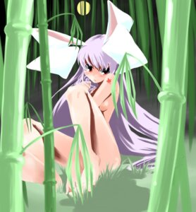 Rating: Questionable Score: 22 Tags: naked reisen_udongein_inaba touhou User: petopeto